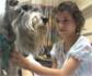 La Fundaci�n Affinity lanza una campa�a en la que 4.100 ni�os desarrollar�n proyectos sobre los animales de compa��a