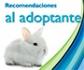 Recomendaciones de interés para los ciudadanos que tengan intención de adoptar un conejo