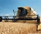 Bayer reúne a 100 jóvenes para buscar soluciones a los retos agroalimentarios