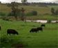 Publicados en el BOE los cambios en la aplicación de la Política Agraria Común