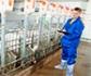 Nueva secretaría del Consorcio Internacional de Investigación en Salud Animal