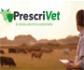 Farmacéuticos y veterinarios firman un acuerdo para diseñar el sistema de receta electrónica veterinaria