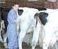 La formación de los estudiantes de veterinaria en bioseguridad, principal medida preventiva para evitar que se vean afectados por zoonosis
