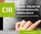 Abierto el plazo de inscripción para la V Edición del 'Curso Online de Interpretación Radiológica en Pequeños Animales' de Colvema