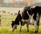 Jornada de orientación profesional: los veterinarios en el ámbito de la sostenibilidad medio ambiental como salida profesional, en la sede de Colvema