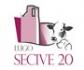 Lugo acogerá del 30 de enero al 1 de febrero el XXV Congreso Internacional de la Sociedad Española de Cirugía Veterinaria (SECIVE)