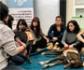 Terapia con perros y otras maneras de evitar el estrés de los estudiantes universitarios