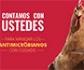 OIE: nueva campaña mundial para combatir la resistencia a los antimicrobianos