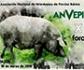 Badajoz acogerá el 14 y 15 de marzo el X Foro de la Asociación Nacional de Veterinarios de Porcino Ibérico