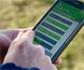 Una aplicación móvil pionera, desarrollada en Reino Unido, mide el bienestar emocional de los animales de granja