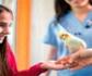 Webseminar gratuito para colegiados y carnet joven: las aves y los reptiles en la clínica generalista de mascotas, organizado por Colvema