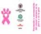 Tríptico UCM y Colvema: Prevención y concienciación del cáncer mamario en la perra y en la gata