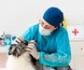 El permiso retribuido recuperable, no es de aplicación a centros clínicos veterinarios, ya que son considerados servicios esenciales