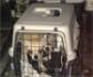 La policía rescata 12 chihuahuas de un criadero ilegal en la localidad madrileña de Meco