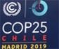 Conclusiones de la COP25 ante la emergencia climática