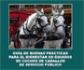 La Organización Colegial Veterinaria ha editado la 'Guía de Buenas Prácticas para el Bienestar en Équidos de Coches de Caballos de Servicio Público'