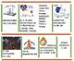 Infografía de resultados de la feria 100X100 Mascota, un éxito de participación, en la que los veterinarios madrileños estuvimos presentes
