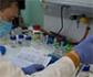 Un investigador veterinario, participa en el diseño del nuevo test serológico español de Covid-19