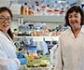 Investigadores españoles demuestra que las plantas pueden ser biofactorías antifúngicas
