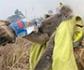 Cerca de 1.000 millones de animales, víctimas de los incendios en todo el territorio australiano