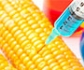 El Gobierno adapta la normativa española sobre organismos modificados genéticamente (OMG) al derecho comunitario