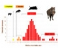 La OIE edita un manual sobre la peste porcina africana y las medidas de bioseguridad necesarias para la caza de jabalíes