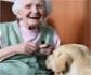 Los adultos mayores que tienen perros como mascota se mantienen más activos, según un estudio