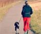 Tener un perro se relaciona con una mejor salud cardiovascular