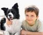 Terapia con perros para ayudar a niños tutelados a superar los efectos negativos de la pandemia
