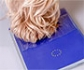 Emisión de pasaportes de animales de compañía para animales con pasaporte británico