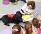 Seis perros fomentan la lectura entre los niños en la Feria del Libro de Madrid