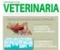 Publicado el último número de la revista Informacion Veterinaria, editada por la Organización Colegial Veterinaria