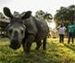 La fauna salvaje amenazada está muriendo debido a enfermedades que comparte con animales domésticos y humanos