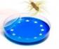 Evaluación de las prácticas para el control de Salmonella en Europa
