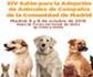 Colvema participará en el XIV Salón para la Adopción de Animales de Compañía de la Comunidad de Madrid, que se celebra en El Retiro el 5 y 6 de octubre