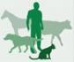 OMS: Cualquier esfuerzo en salud humana está 'condenado' sin salud animal