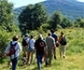 La Comunidad de Madrid pone en marcha una campaña informativa para conciliar ganadería y turismo en la Sierra del Rincón, reserva de la biosfera