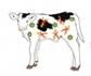 Los animales persistentemente infectados desempeñan un papel sustancial en la epidemiología de la diarrea vírica bovina