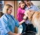 La veterinaria sigue siendo actividad esencial en el estado de alarma, y se permitirá a los ciudadanos acudir, durante el toque de queda, a las clínicas veterinarias en caso de urgencias