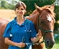 El número de veterinarios en España ha experimentado un importante crecimiento en los últimos cuatro años, y ya alcanza los 33.752