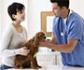 Disponibles los informes vinculados al estudio 'Veterinaria 2030: Libro Blanco de la Profesión Veterinaria'