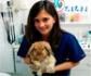 La veterinaria de animales exóticos, una especialidad muy amplia que requiere conocer la medicina de un enorme número de especies