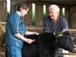 La inspección veterinaria en las explotaciones ganaderas