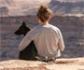 Cinco consejos para viajar cómodamente con tu perro