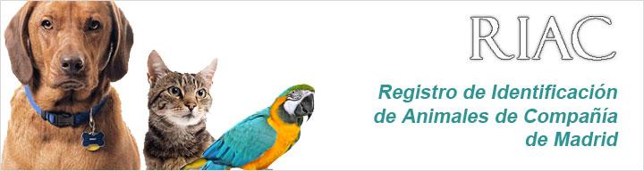 Página de Registro de identificación de animales de compañia de Madrid